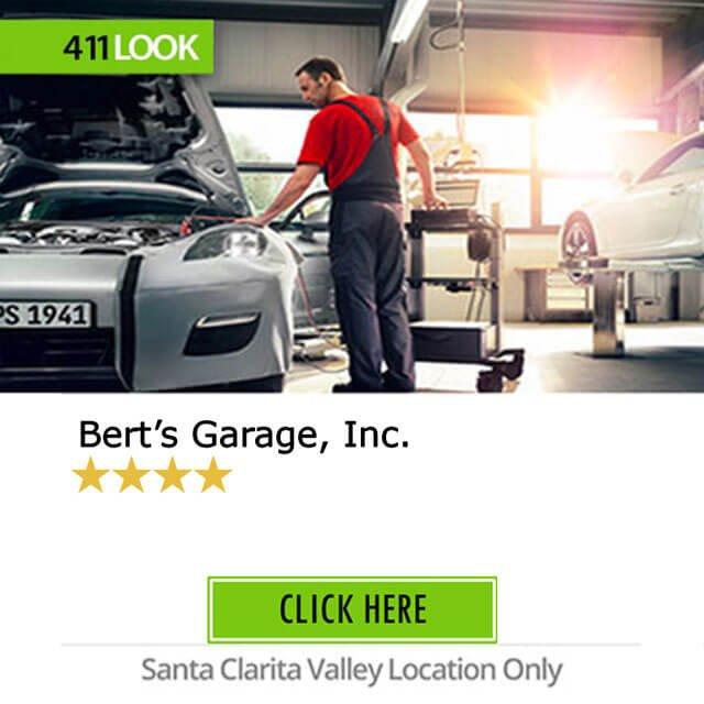 Bert's Garage, Inc.