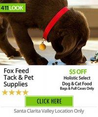 Fox Feed